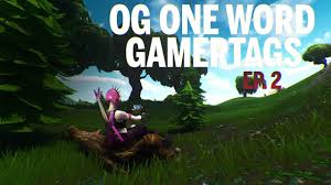 If you are in search of fortnite names for your social media, and you have clicked a good picture through which you have to post a good name, actually a good fortnite name, then you can freely choose any of your liking from the names that are mentioned here below. Og One Word Tryhard Gamertags Ep 2 Not Taken By Szzr