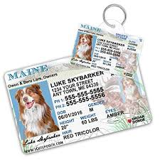 Custom Dog For Pet com Card Driver Id Supplies License Maine Tags Amazon Cat And Pets Tag Wallet - Cats Dogs Personalized