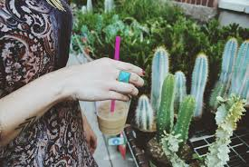 free images outdoor woman female pattern botany lady close up refreshment floristry flowering plant home garden cactus plant cactus garden
