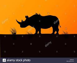 Black Rhino Design Vector Black Rhino Silhouette Background Sunset Stock Vector
