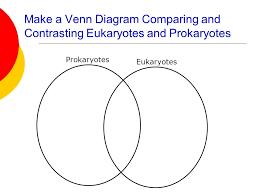 Bacteria And Viruses Venn Diagram Venn Diagram Comparing Viruses And Cells