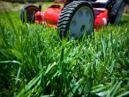 Why not learn more about  Mowers?