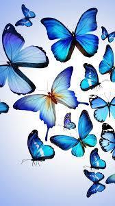HD Blue Butterflies iPhone Wallpaper ...