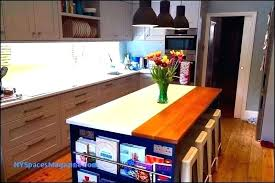 wood countertops cost building petrified