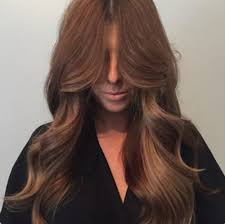 Global Hair Colour Best Brands In India Benefits Side
