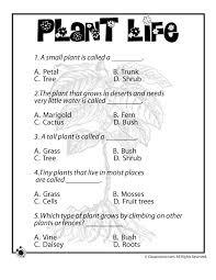 Science Worksheets for Grade 1 On Plants | Homeshealth.info