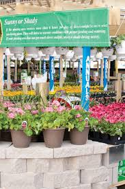 get growing with menards garden center from seed starting guides to insect prevention tips we ve got everything you need to grow the best garden