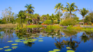 10 best hotels closest to naples botanical garden in east naples for 2019 expedia