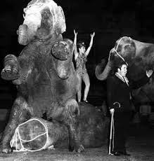 Circus Performers Bobby and Rosa Gibbs