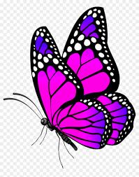 3d Butterflies And Flowers - 3d ...