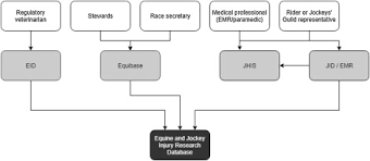Equibase Full Charts A Sustainable Structure For Jockey Injury Data Management