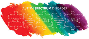 essays kristina wyatt autism spectrum disorder recognizing delays implementing adaptations and fostering inclusion in the classroom