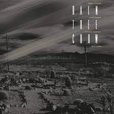 <b>Rain Tree Crow</b> reissued on 180g vinyl | superdeluxeedition