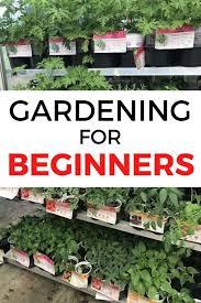 beginners gardening tips