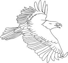 Small Picture The Flying Bald Eagle Coloring Page NetArt