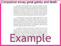essay on death of a salesman comparison essay great gatsby and death of a salesman term paper