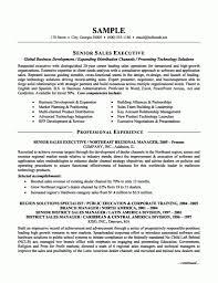 Executive Hybrid Resume Template New Professional Executive Resume