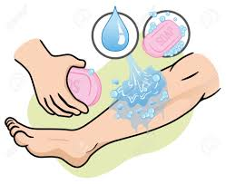 washing body clipart. Brilliant Body Soap Clipart Body Soap Clip Art Washing Wash Picture Free Library With Washing Body Clipart B