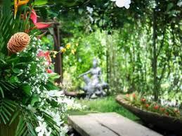 growing philippine plants in your garden