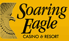 Image result for soaring eagle casino