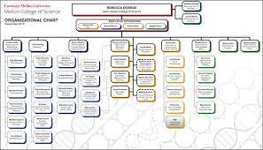 Mcs Strategic Plan 2025 Goals Mellon College Of Science