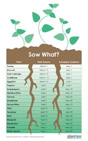 Sowing Chart Planning A Garden Part 1 Plant Schedule Planitdiy