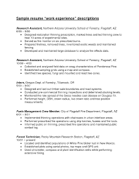 First Resume Job Experience Resume Examples 100 Images 100 First Resume No Resume 90