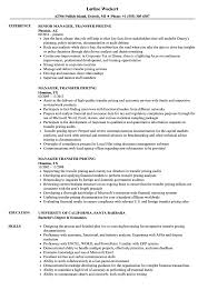 Transfer Resume Sample Manager Transfer Pricing Resume Samples Velvet Jobs 7