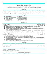 resume format java developer doc resume example resume format java developer doc programmer cover letter examples ui developer resume end web developer resume