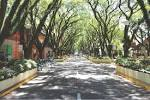 imagem de Santa Cruz do Sul Rio Grande do Sul n-4