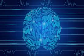 new study reveals how brain waves control working memory mit news mit neuroscientists have found evidence that the brain s ability to control what it s thinking about relies