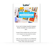Newletter Example Newsletter Examples How To Craft Irresistible Newsletter