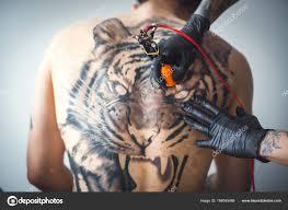 тату тигр стоковое фото Ufabizphoto 186045468