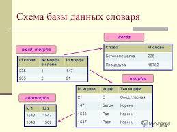 Презентация на тему Дипломная работа Программная поддержка  6 Схема базы
