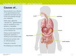 Image result for gastroenteritis