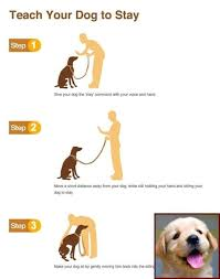 Dog Training Hand Signals Chart Pdf House Training A Puppy With Crate And Clicker Training Dogs