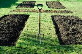 Small Picture Vegetable Garden Plans and Layouts
