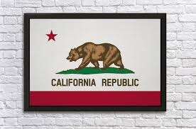 california state flag fun with flags