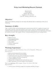 Sales Summary Resume Resume Summary Examples Entry Level Sales It Marketing Jobs