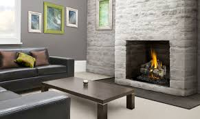 22 vented napoleon fireplaces