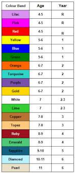 Collins Big Cat Level Chart Pm Benchmark Reading Levels