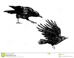 эскиз руки ворон иллюстрация вектора иллюстрации насчитывающей