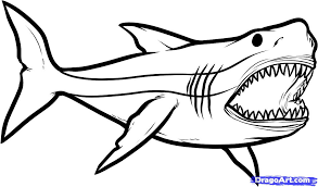 Small Picture Printable Reef Shark Coloring Page Coloringpagebook Com Coloring