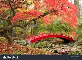 Japanese Style Garden Bridges Beautiful Japanese Gardens Pictures Beautiful Japanese Garden Red
