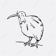 手描きの鉛筆のグラフィックキウイ鳥彫刻ステンシル スタイルです黒と白のロゴ記号紋章記号
