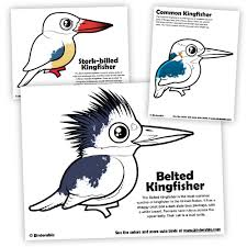 Small Picture Download Free Kingfisher Coloring Pages by Birdorable