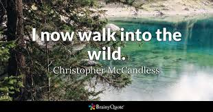 Into The Wild Quotes Cool I Now Walk Into The Wild Christopher McCandless BrainyQuote