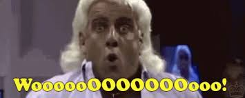 Image result for ric flair woooooooooooo
