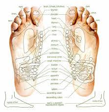 Foot Chart Reflexology Foot Chart