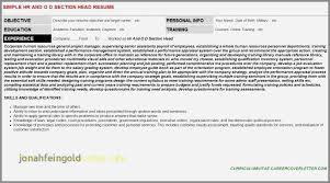 Cashier Sales Associate Resume Abletter Vaultradio Co